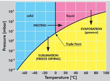 Fig. 1  Phase diagram of water for food drying